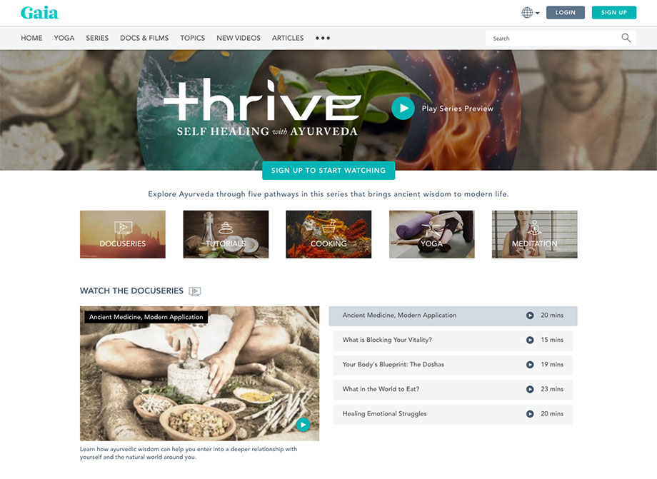 Thrive Web 3